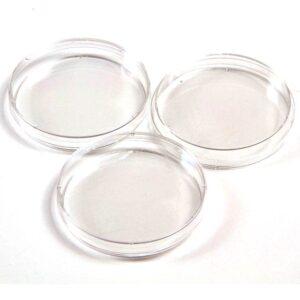 Capsula de Petri